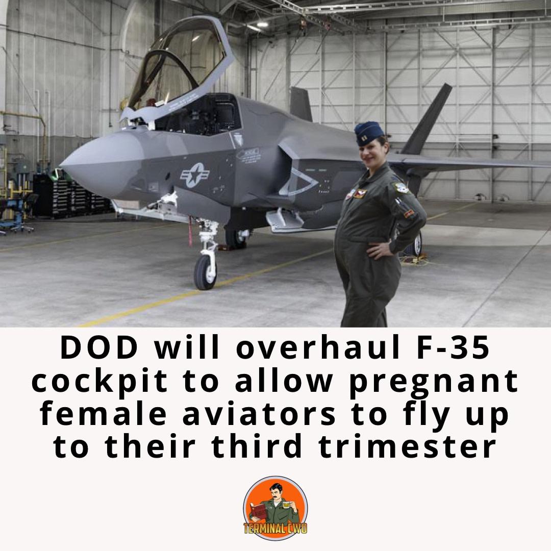 Pregnant Female Aviator 1